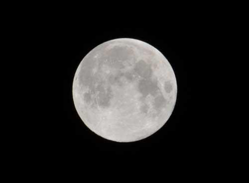 中秋の名月、しかも満月
